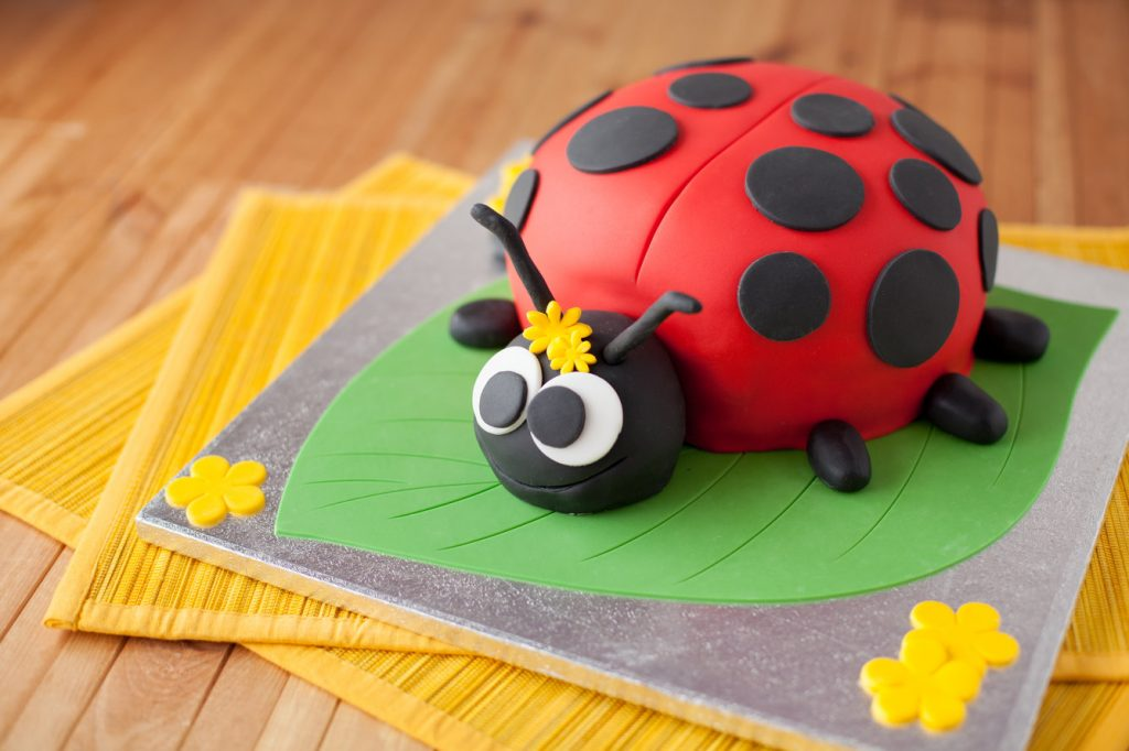 Ladybug Cake Decorations Ideas
