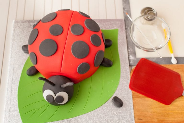 ladybird_birthday_cake_recipe; birthday_cake; how_to_make_a Kids_birthday_cake;I_love_cooking_cake