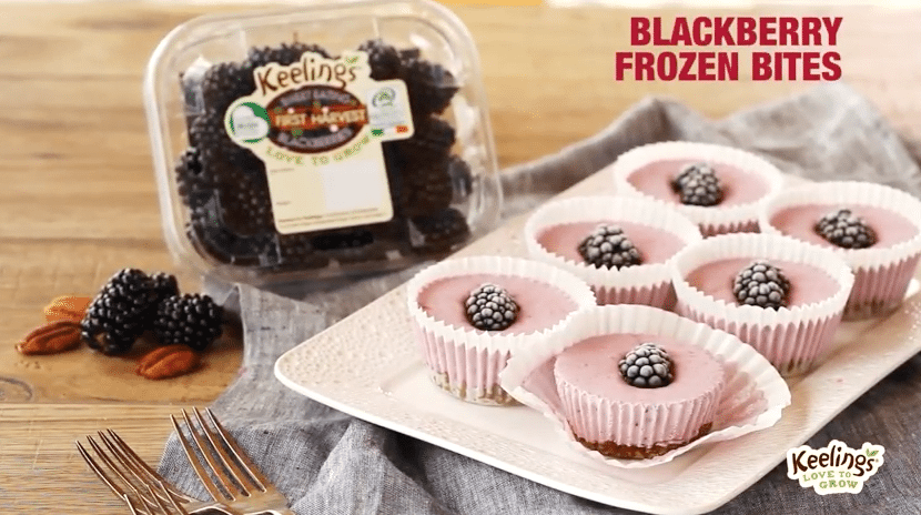 Keeling's Blackberry Frozen Bites, I love Cooking, I love Cooking Ireland, Irish recipe website